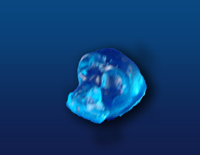 Blue_Small_Skull_4fa7045e62be0.jpg