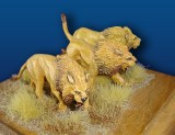 Male_Lion_Set__3_4d3e38c7f26c1.jpg